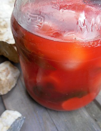 Radieschen, fermentiert